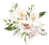百合花束水彩画像